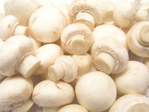 Mushrooms. Background Royalty Free Stock Photos