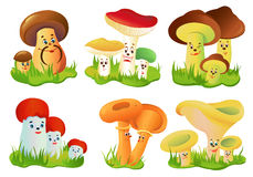 Free Mushrooms Stock Images - 24189354