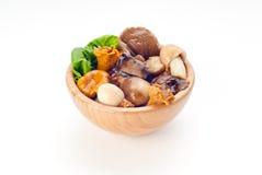 Free Mushrooms Stock Images - 25696304