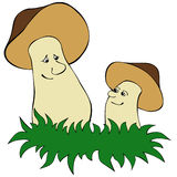 Mushrooms. Two mushrooms stand alongside in a grass Royalty Free Stock Photography