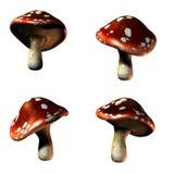Mushrooms in 3D Stock Image