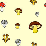 Mushrooms3 库存图片