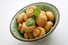 Mushrooms. Some mushrooms in chinese table ware stock image
