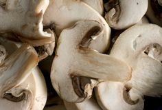 Mushrooms. Closeup of sliced mushrooms royalty free stock photography
