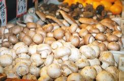 Mushrooms. Royalty Free Stock Photos