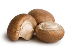 Mushrooms. Fresh mushrooms with shadow isolated on white background Royalty Free Stock Photos