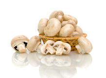 Mushrooms (Agaricus) in basket on white background Stock Photos