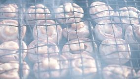 Mushrooms on barbecue grill stock video footage