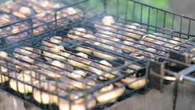 Mushrooms on barbecue grill stock video