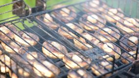 Mushrooms on barbecue grill. Chef cooks mushrooms on barbeque grill an outdoor charcoal fire stock footage