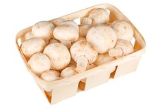 Mushrooms in a basket Royalty Free Stock Image