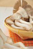 Mushrooms on Basket. Stock Image