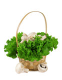 Mushrooms in a basket with lettuce Stock Photo
