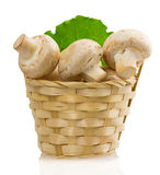 Mushrooms in a basket on a white background Stock Photo