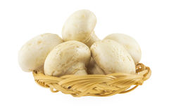 Mushrooms in a basket. On a white background stock photo