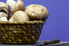 Mushrooms in a basket Stock Photos