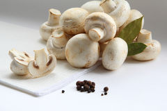 Mushrooms, bay leaf and pepper Stock Images