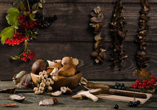 Mushrooms and berries. Harvesting berries and mushrooms in the country in autumn Stock Photos