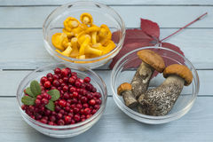 Mushrooms and berries on a wooden background. Close up royalty free stock photos