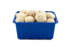 Mushrooms in blue box . Clipping paths included. Stock Photo