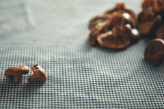 Mushrooms on a blue and white checkered tablecloth Stock Photography