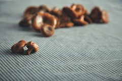 Mushrooms on a blue and white checkered tablecloth Royalty Free Stock Photography