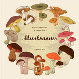 Mushrooms. Botany. Engraving. Vector vintage illustration . Round frame. Vector illustration with mushrooms. Colorful labels with mushrooms. Klassichemkaya frame Royalty Free Stock Images