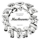 Mushrooms. Botany. Engraving. Vector vintage illustration . Round frame. Vector illustration with mushrooms. Colorful labels with mushrooms. Klassichemkaya frame Royalty Free Stock Photos