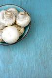Mushrooms in bowl Stock Images