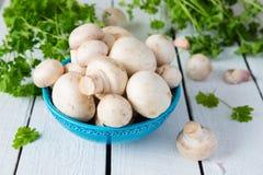 Mushrooms in bowl Stock Image