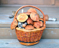 Mushrooms in brown basket on porch closeup Royalty Free Stock Photo