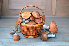 Mushrooms in brown basket on porch Royalty Free Stock Photos