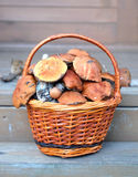 Mushrooms in brown basket on porch Stock Images