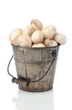Mushrooms in Bucket Stock Photography