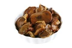 Mushrooms on ceramic Royalty Free Stock Photos