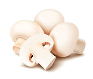 Mushrooms. Champignon Royalty Free Stock Image