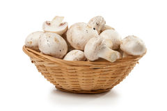 Mushrooms champignon in a wicker basket Stock Photography