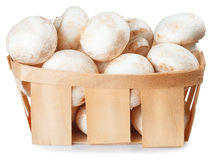 Mushrooms champignon in a wicker basket isolated on white Royalty Free Stock Images