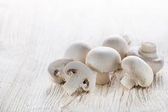 Mushrooms champignons Stock Image