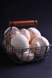 Mushrooms champignons. In a metal basket royalty free stock photos
