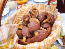 Mushrooms chocolate candy holiday snacks cookies festive food in basket on table picnic feast outdoors Stock Image
