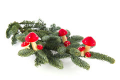 Mushrooms with Christmas Royalty Free Stock Images