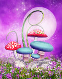 Mushrooms on a colorful meadow stock illustration