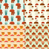 Mushrooms for cook food and poisonous nature meal vegetarian healthy autumn edible and fungus organic vegetable raw. Ingredient vector illustration. Gourmet Stock Photography