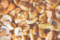 Mushrooms. Cook mushrooms and chicken with cream sause. Top view stock photos