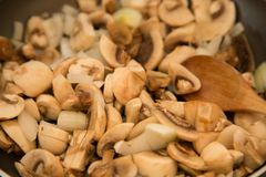Mushrooms. Cooked at the frying pan and a wooden spoon Royalty Free Stock Photo