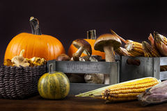 Mushrooms, corn and pumpkin Royalty Free Stock Photography