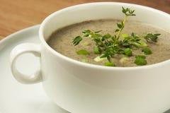 Mushrooms cream soup royalty free stock image