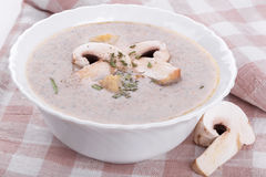 Mushrooms cream soup with agaric Stock Photo