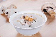 Mushrooms cream soup with agaric Stock Photos